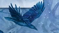 Míla Linc: Stín Černého hvozdu (perex)