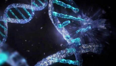 DNA nevzniká jen tak, je to velmi složitý proces. Zdroj: NASA.gov