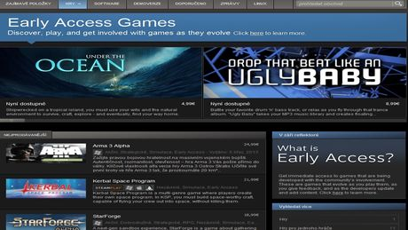 FOTO: Early Access Games Steam