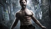 Wolverine perex 3D