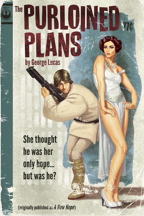 Tak takhle nějak Luke v Nové naději zachraňoval Leiu. Zdroj: timothyandersonart.com
