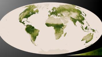 OBR: Vegetační pokrytí planety