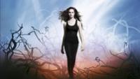 Veronica Rossi: Nebe 1 - Pod nekonecnou oblohou