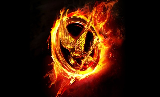 hunger games mockingjay pt1pic