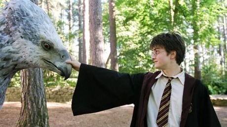 FOTO: Harry Potter