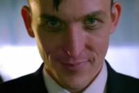 Gotham Tučňák